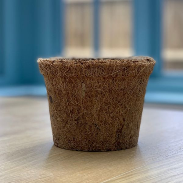 Biodegradable Coir Fibre Pot - 13cm