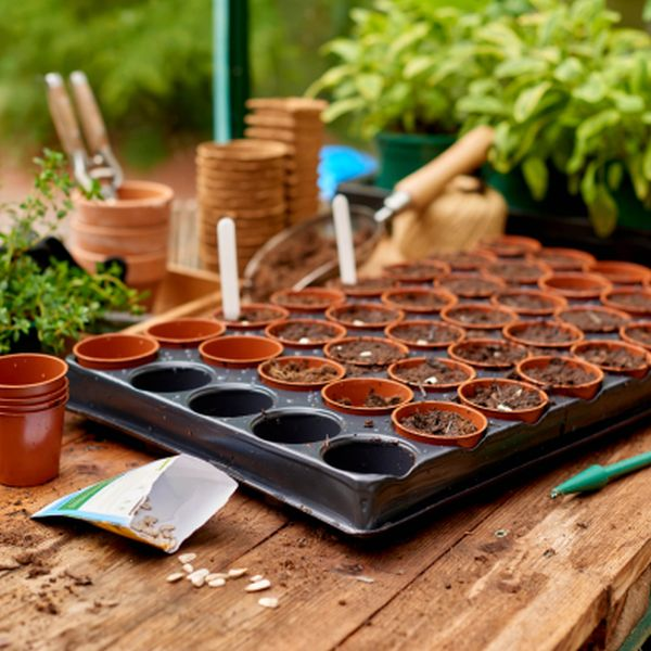 Seed and Cutting Tray 40 Pot