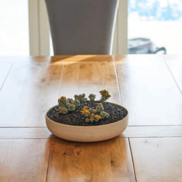 Small Disk Planter
