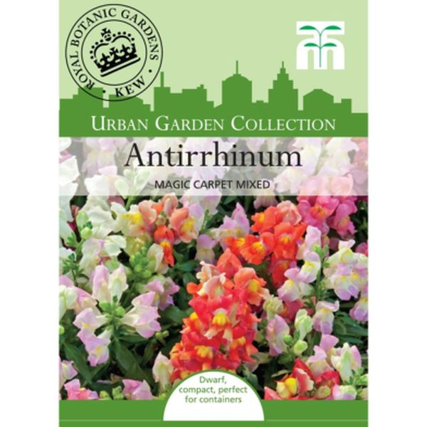 T&M Antirrhinum Magic Carpet