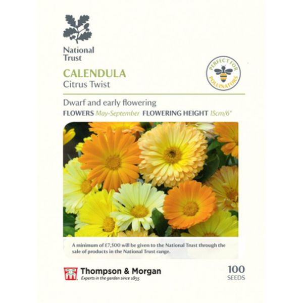 T&M Calendula Citrus Twist