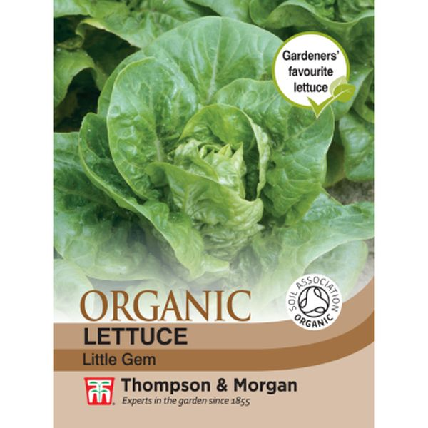 T&M Lettuce Little Gem (Organic)