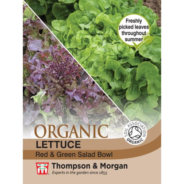 T&M Lettuce Red & Green Salad Bowl (Organic)
