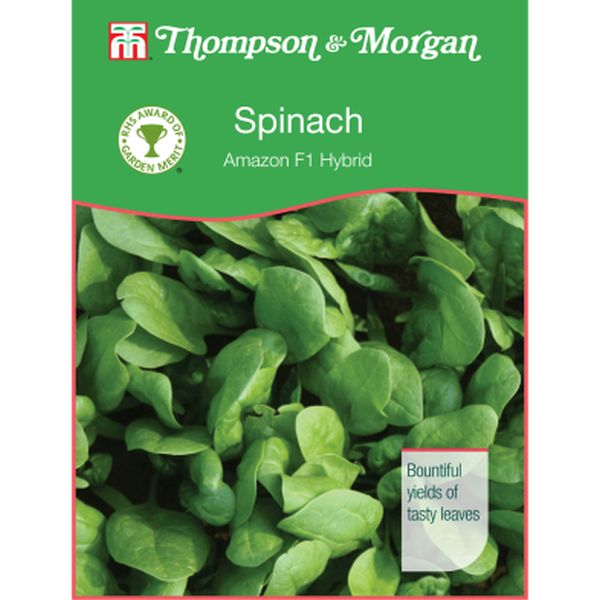 T&M Spinach Amazon