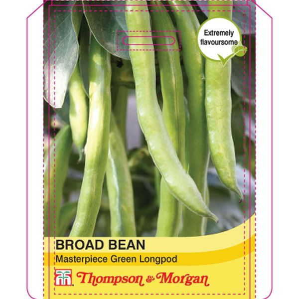 T&M Broad Bean Masterpiece Green Longpod
