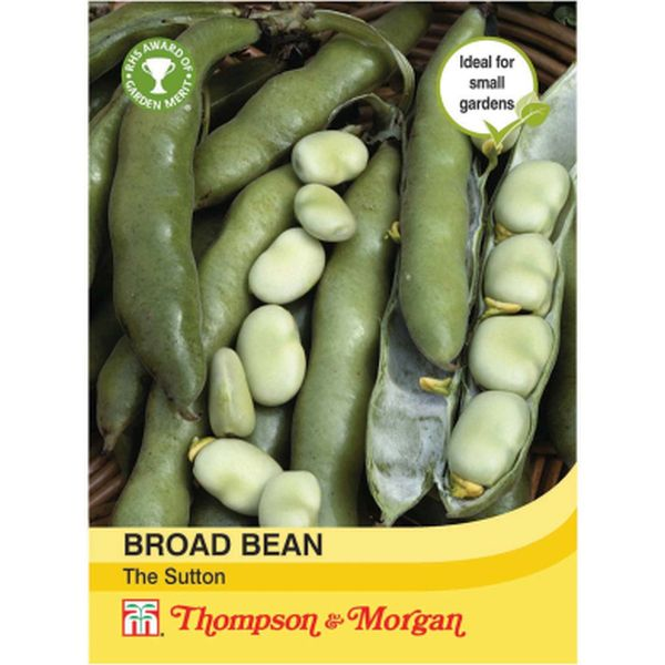 T&M Broad Bean The Sutton