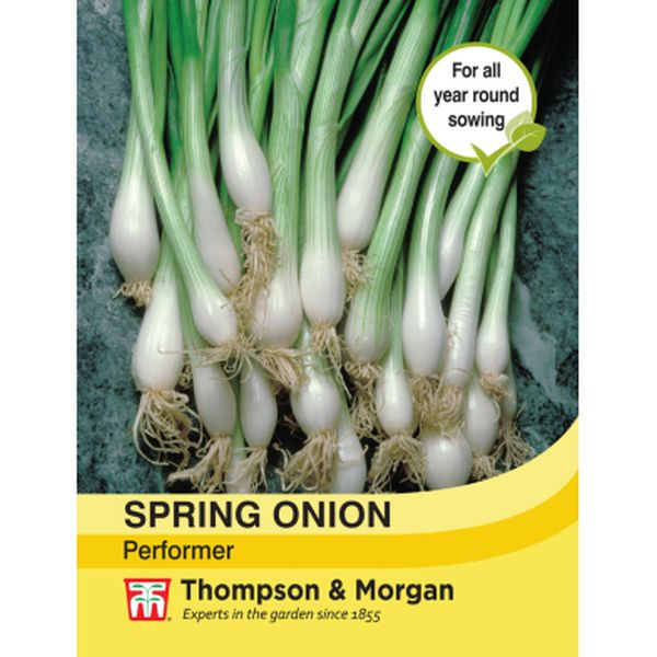 T&M Spring Onion Performer