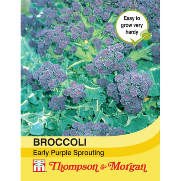 T&M Broccoli Early Purple Sprouting