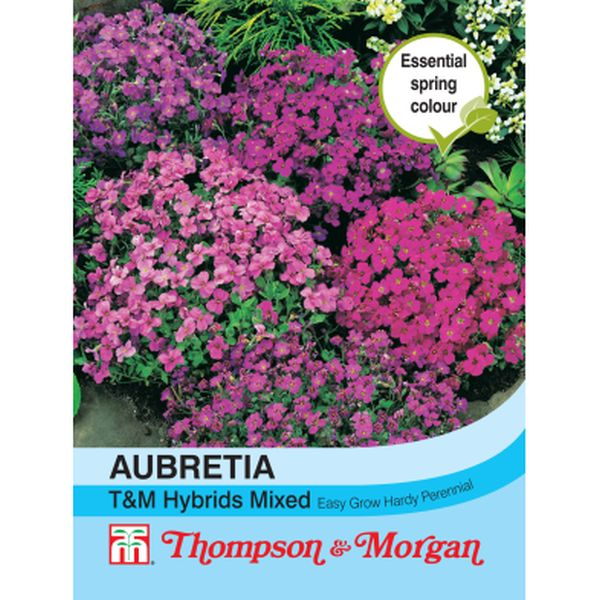 T&M Aubrieta T&M Hybrids Mixed