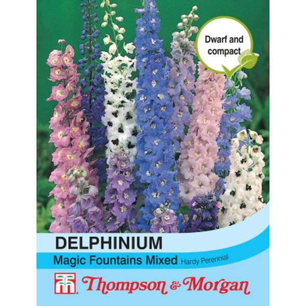 T&M Delphinium Magic Fountains