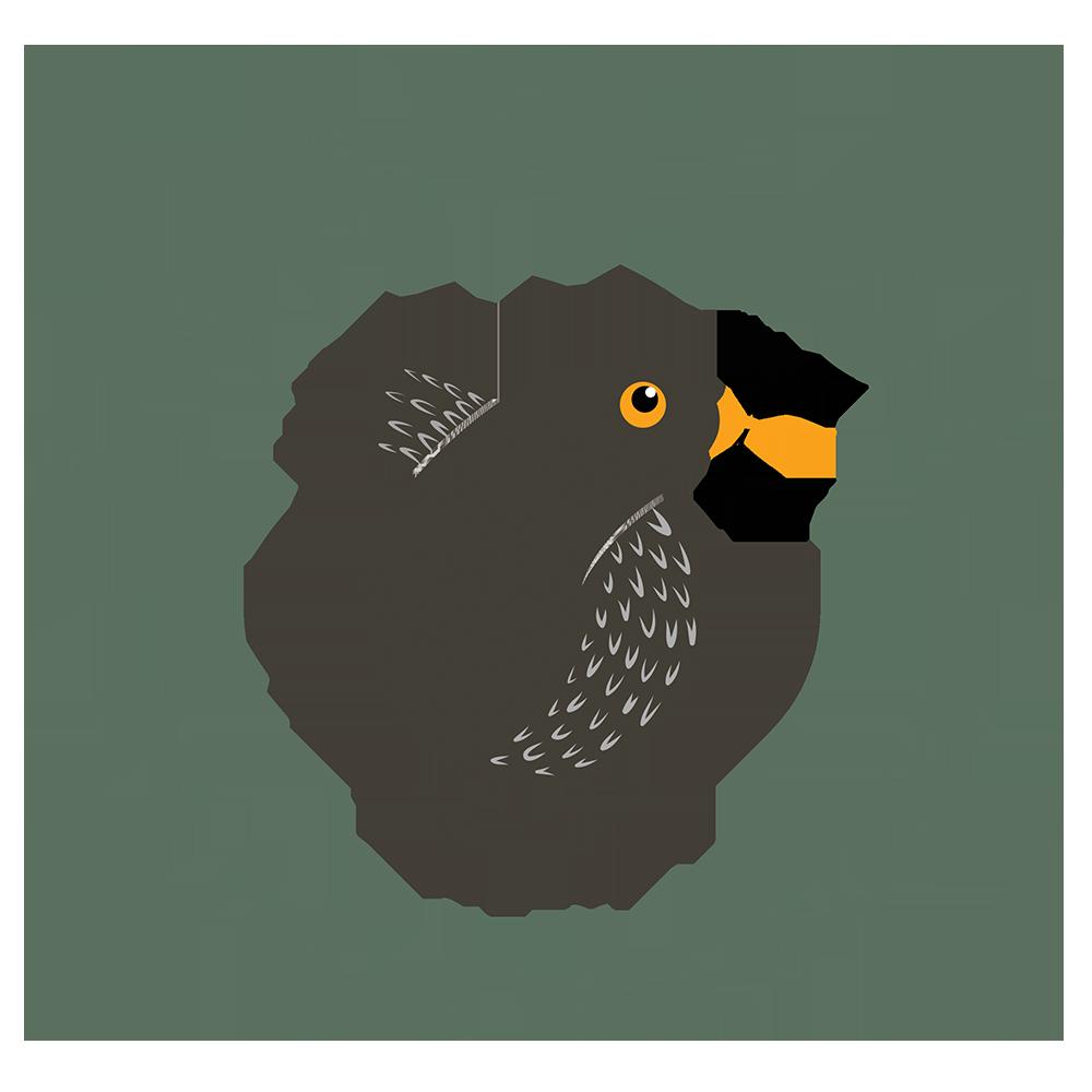 Yarnton Home & Garden logo