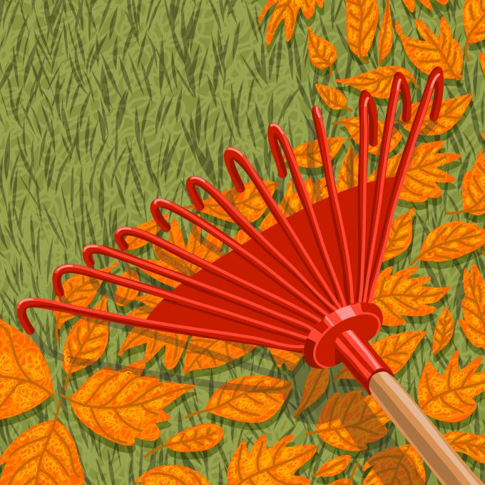 Featured image for 'Twiggy's Autumn Gardening Tips'
