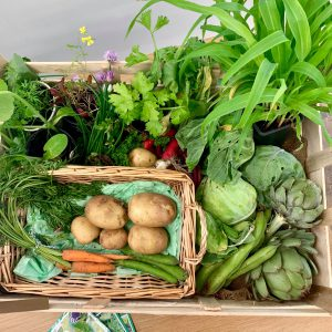 A box of home grown vegetables