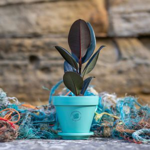 Mint Green Ocean Plastic Pot surrounded by fishing nets and standing on a rock with a seaside wall background